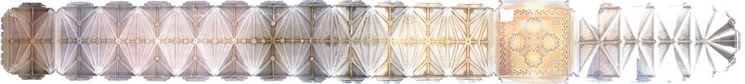 TtP_Westminster_ortho_photo_roof_plan